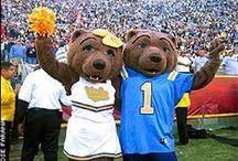 UC Mascots / University of California School Spirit and Mascot information