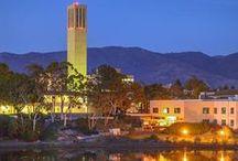 UC Santa Barbara / UCSB UC Santa Barbara campus and Gauchos school spirit