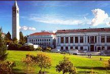 UC Berkeley / UC Berkeley campus and Cal school spirit