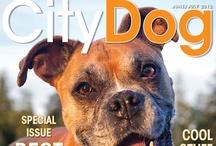 CityDog Cover Archive
