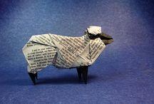 Sheep / by jillianmoreno