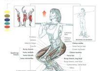Gym / Tips, motivation, inspiration, gym