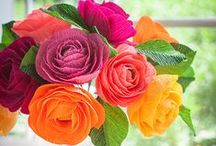 DIY Flowers / by Ross  シ