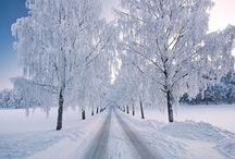 Winter & Snow