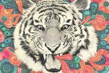 Tigerrawr