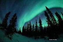 Northern Lights / The Aurora Borealis - a natural phenomenon associated with the High Arctic