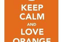 NARANJA  ◎ ORANGE / البرتقالي<>TARONJA<>ORANGO<>주황색<>LARANJA<>ARANCIONE<>橙<>OREN<>πορτοκάλι<>ORÁISTE<>नारंगी
