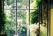 Mini gardens / Dream gardens
