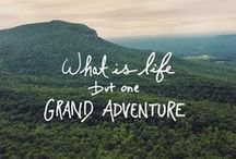 Adventure Quotes / We love to adventure, especially in tree houses!