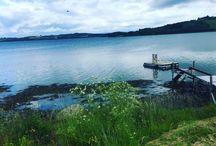 My summer / Summer in Norway 2017
