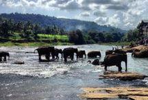 Sri Lanka / Locations in and around Sri Lanka.