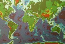 The World in Twelve Layers paper / The World in Twelve Layers. Handmade Paper Cut www.beeldontwerper.nl