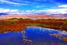 Mi trabajo. / Fotografía de paisaje y naturaleza.