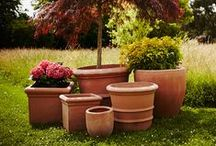 Under the Tuscan Sun  - Terracino Planters and Pots / Our Terracino range of planters are fire to a much higher temperature than standard terracotta making them frost-resistant up to -40°C. Their designs are based on classic Tuscan pottery, combined with modern day quality and style.  To see more visit www.thepotco.com