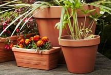 Tried and Tested - Terracotta, Classic, Traditional Pots and Planters / Our classic pots are an excellent value range of terracotta pots, planters and accessories.  Perfect for a classic style or to customise to create a unique item to suit any outdoor space.  To see more visit www.thepotco.com