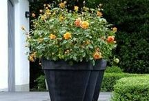 Industrialised Innovation - Polymer Concrete Planters and Pots / Polymer Concrete is a concrete composite which is frost resistant and extremely strong.  To see more visit www.thepotco.com