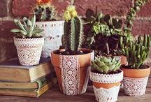 Potty Ideas / A place for planting and potting ideas! For those who like to think outside the box!