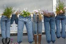 farmerből virágtartók, jeans planters / farmerből virágtartók, jeans planters