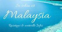 Asien | Backpacking Malaysia / Malaysia sollte auf deiner Bucketlist für deine nächste Asienreise auf keinen Fall fehlen und liegt direkt zwischen Thailand und Singapur. Die Anreise per Bus, Fähre oder Flugzeug ist also ein Kinderspiel! Erlebe Kuala Lumpurs Nighlife von Rooftops Bars mit Infitiy Pool, wandere mit deinem Rucksack durch die einzigartige Landschaft der Cameron Highlands oder bestaune die wunderschönen Strände der Pulaus, wie den Perhentian oder Langkawi!