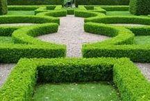 Classic Garden Contemporary / by Sara Bendrick