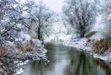 The Whisper of Winter