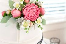 Cakes & Catering / Food and cake can make a big impression at a wedding.  You want to treat your guests to a great meal, but that doesn't mean it has to be expensive!  Get creative with your food and cake!  Treat your guests to a meal that reflects you as a couple!  Check out these awesome ideas for a unique dining experience for your guests!
