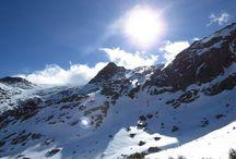 CASAS RURALES EL REAL DE BOHOYO / Disfruta de la Naturaleza en estado puro en la Sierra de Gredos
