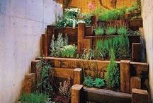 HOME. Small space gardens