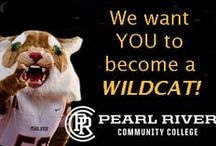 How to become a WILDCAT / Steps needed to become a student at Pearl River Community College , Poplarville MS / by Pearl River Community College