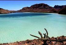 The Baja
