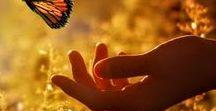 la vie est belle / Żeby dostrzegać cuda trzeba mieć w sobie miłość, żeby dostrzegać piękno i umieć się nim wzruszać-pięć zmysłów to za mało, do tego trzeba duszy. Żeby dostrzegać i czuć dobro trzeba mieć wrażliwość, żeby dostrzegać drugiego człowieka należy być głodnym tych relacji należy kochać siebie i innych...a dostrzeżemy to wszystko póki serce nasze w głaz nie zamienią się Wszystko warte jest dostrzeżenia-życie pięknem jest!