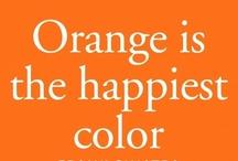 Orange / by Michal Rozen Bar