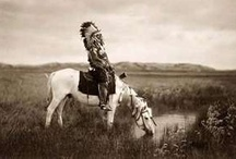 Native American / by Michal Rozen Bar