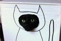 ...a kot patrzy...