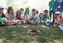 Campos de Férias / Campos de férias que pretendem, de forma lúdica e divertida, despertar o interesse das crianças e jovens pelo maravilhoso mundo das Ciências.