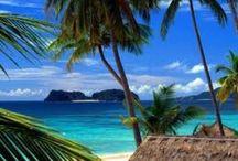 Aloha from Hawaii / by Jan Haslanger