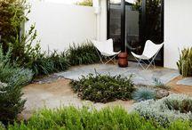 Outdoor Ideas / Succulents & Swings