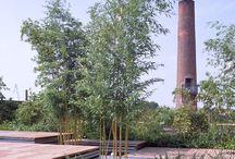 LA 2 | cz studio | pensili garden / pensili garden. venice. 1998-99