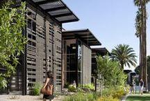 architects | lake flato