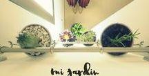 Hacer jardín vertical en interior de apartamento / Decorar con plantas, cactus y suculentas
