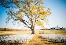 Outdoor Wedding Ceremonies / Get inspired with the most beautiful and unique outdoor wedding ceremony ideas. / by WeddingWire