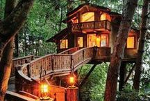 Architecture ♥ Tree Houses