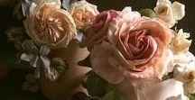 Gâteaux habillés de fleurs / Les fleurs font-elles grossir ?  A cette question je suis obligée de répondre : oui. Fleurs à la crème ou en sucre, délicates et romantiques, ce sont de véritables œuvres d'art.