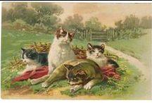 Vintage PostCard-Dog & Cat / . / by Elena Bratkovic