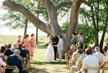 /wedding