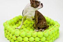 Csináld magad! Kutyafekhelyek / Házilag, otthon is elkészíthető, dizájnos, ötletes kutyafekhelyek.