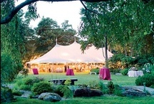 Beautiful Wedding Tents / No matter what your tastes, there is a beautiful wedding tent for you and we can help you match any of these looks!