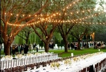 Ideas for your wedding day and beyond. / Here are some clever ideas to help make your wedding day even more brilliant. From wedding invitations, through to the ceremony, the reception and much more.