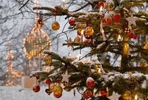 Cozy Christmas Scenes