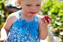 North Carolina Food & Farm / North Carolina Homegrown Foods & Family Farms!